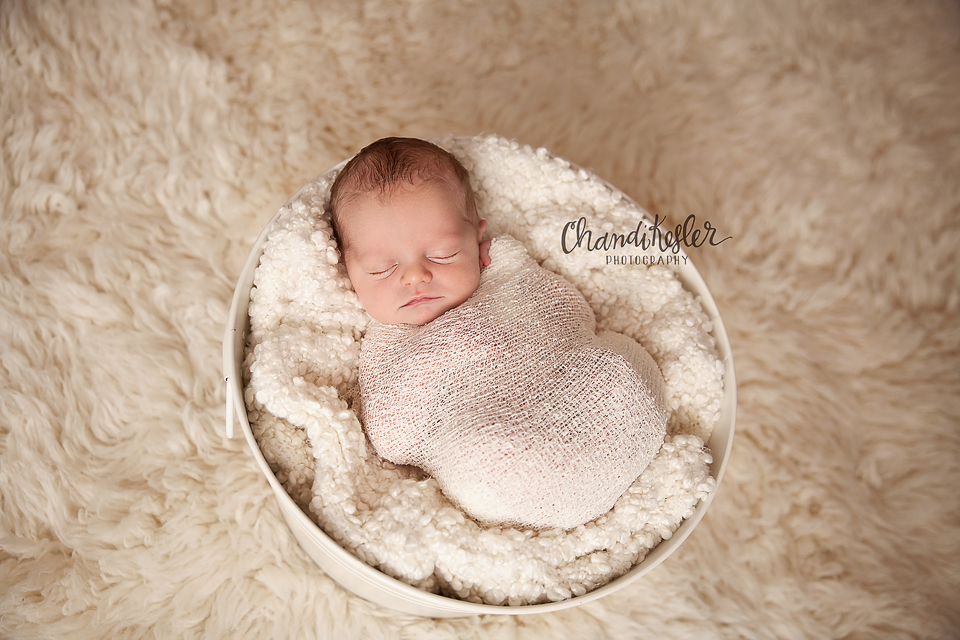 Bloomington Illinois Baby Photographer