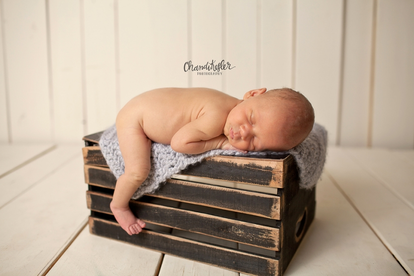 Bloomington Illinois Baby Photographer 2715