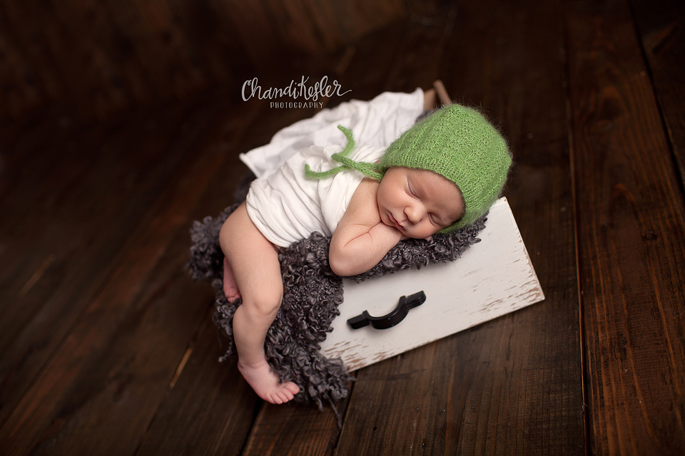 Washington Illinois Baby Photographer