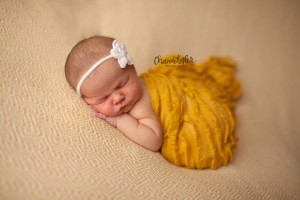 yellow newborn girl session