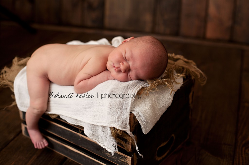 Kankakee Baby Photographer 8779