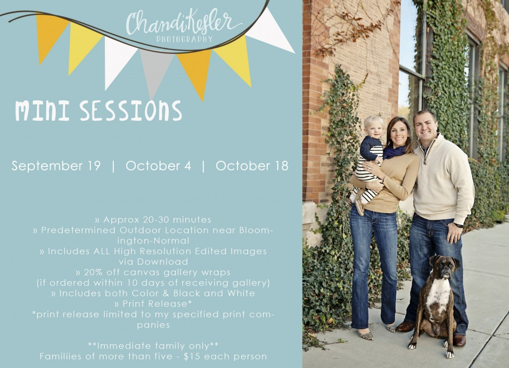 Central Illinois Fall Mini Sessions