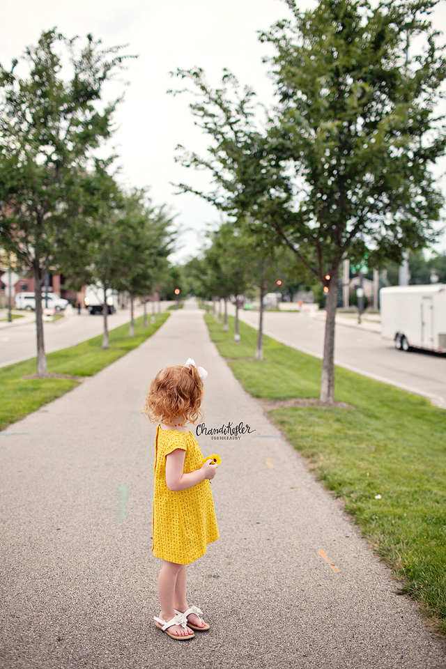 Chenoa Illinois Photographer  - 3 year old session