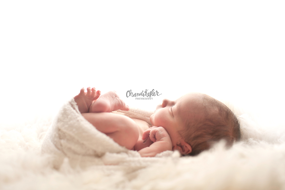 Clinton Illinois Newborn Photographer - Newborn dream lighting