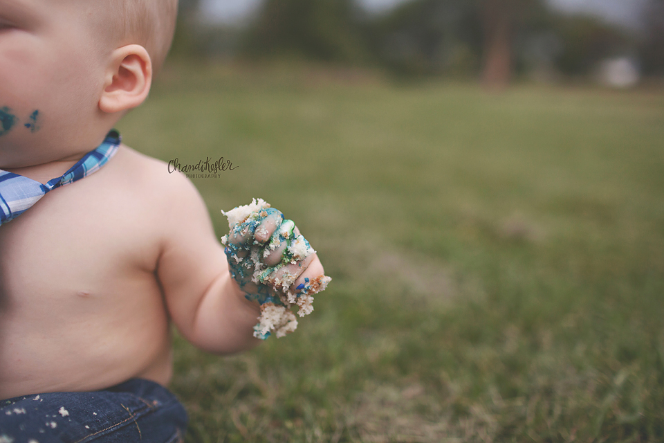Cake Smash Session - 1 year on location session - Fairbury IL Baby Photographer