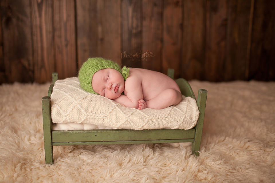 Streator Newborn Photographer - newborn prop poses