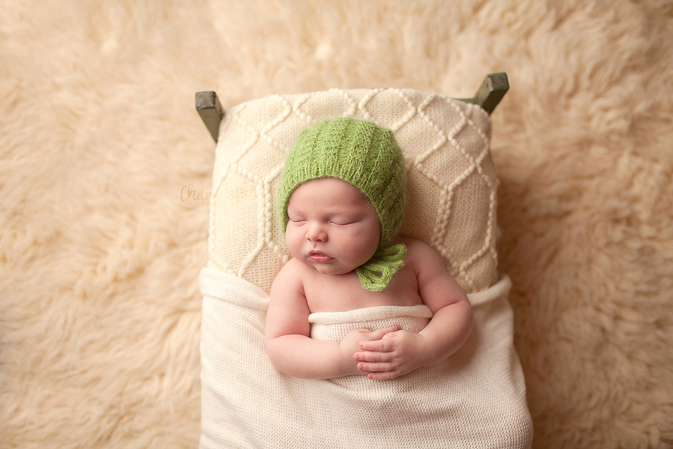 Streator Newborn Photographer - newborn sposing tucked in shot