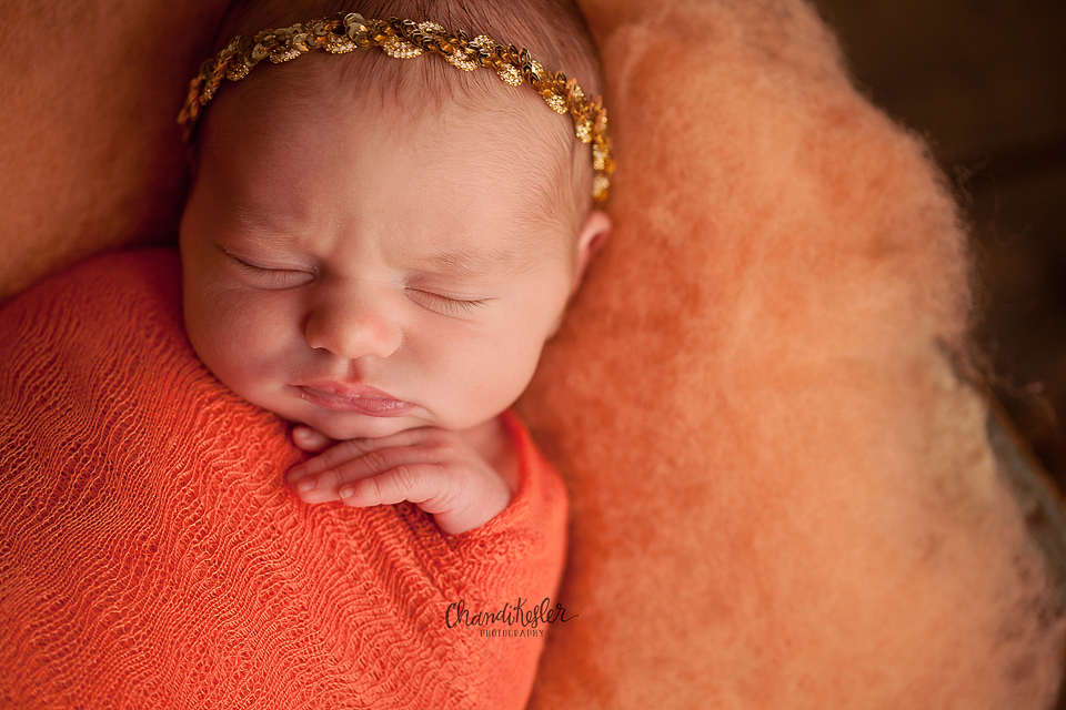 Baby girl newborn session - Chandi Kesler Photography - Bloomington IL Photographer