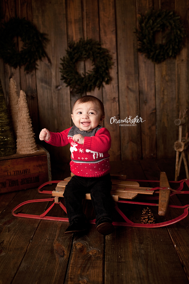 Goodfield Photographers - Holiday Mini Sessions