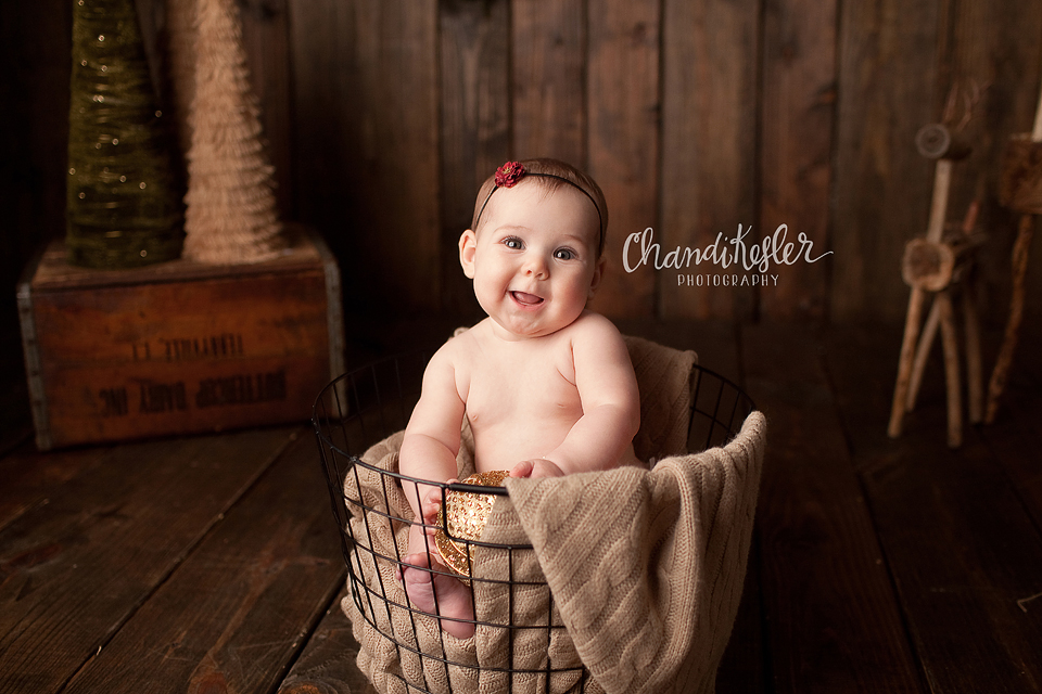 Champaign Baby Photographer - Holiday Mini Sessions