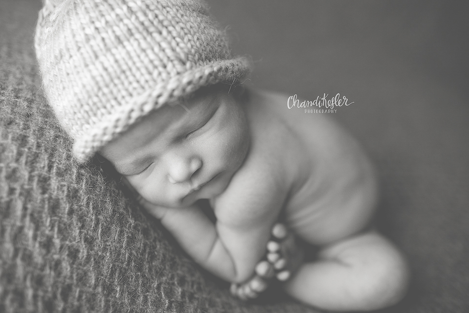 Bloomington IL Newborn Photographer