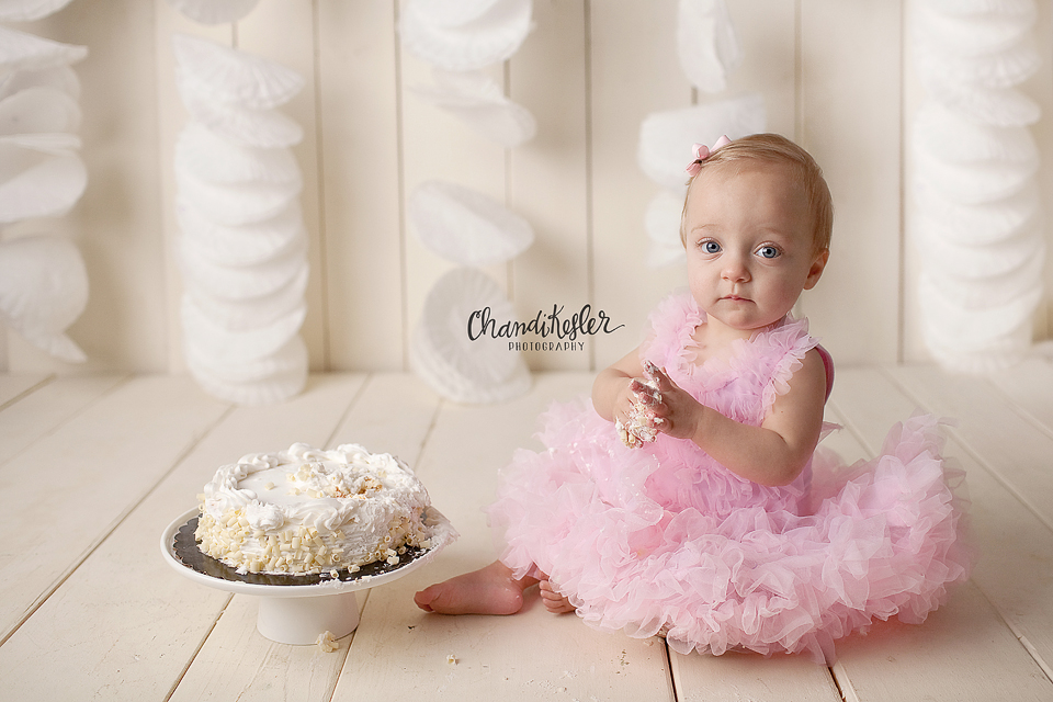 Chandi Kesler Photography | Bloomington iL Photographer | Cake Smash Session | One Year Mini Session