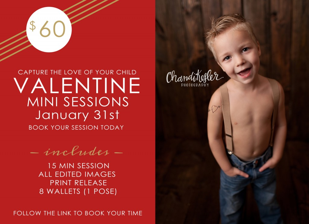 Bloomington IL Photography - Mini Sessions