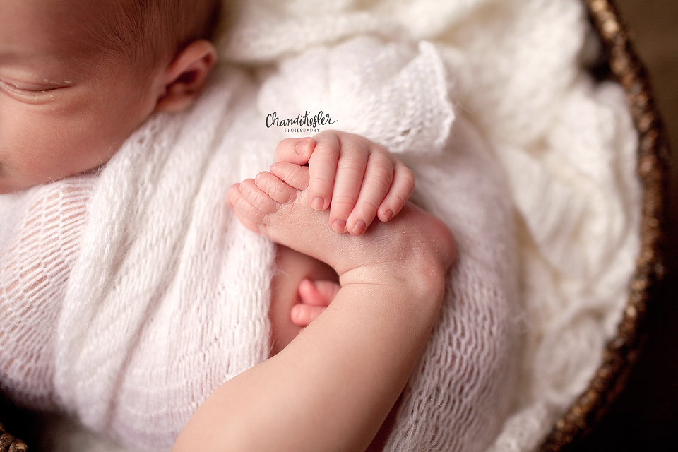 Newborn Photos | Danville IL Photographer | Chandi Kesler Photography | Bloomington IL