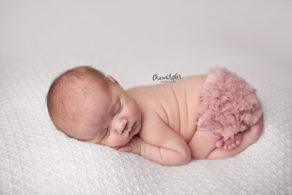Newborn Girl Session Ideas | Gibson City Photographer | Chandi Kesler Photography | Bloomington  IL