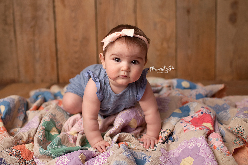 9 month baby session   Streator IL Photographer   Chandi Kesler Photography   Bloomington IL