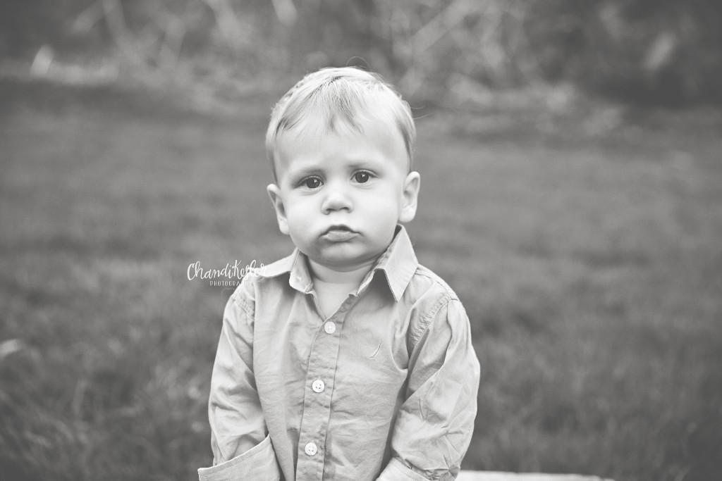 Bloomington IL Baby Photographer | 1 year photos | Chandi Kesler Photography