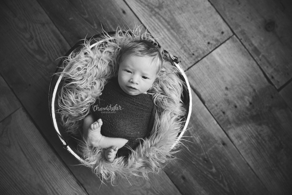 Bloomington IL Baby Photographer | Newborn Boy Photos | Chandi Kesler Photography