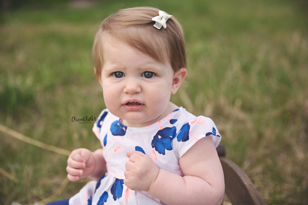 Bloomington IL Photographer | Spring Photos | Chandi Kesler Photography