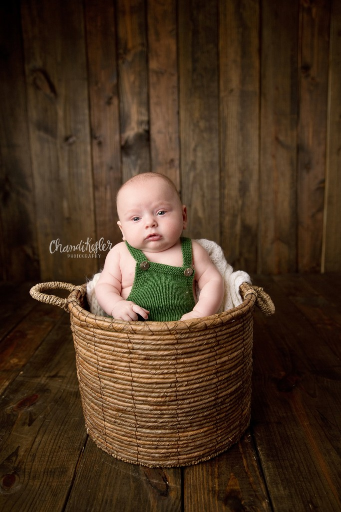 3 Month pictures | Peoria Photographer | Bloomington Baby Photographer | Chandi Kesler Photography
