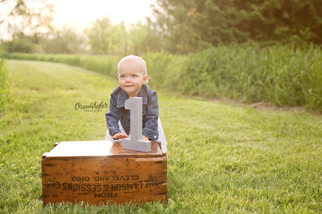 1 year baby pictures | Champaign Baby Photographer | Chandi Kesler Photography | Bloomington IL