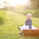 Bloomington Baby Morton Family Photographer | Family and Cake Smash Session with Addy | Milestone Baby Photos