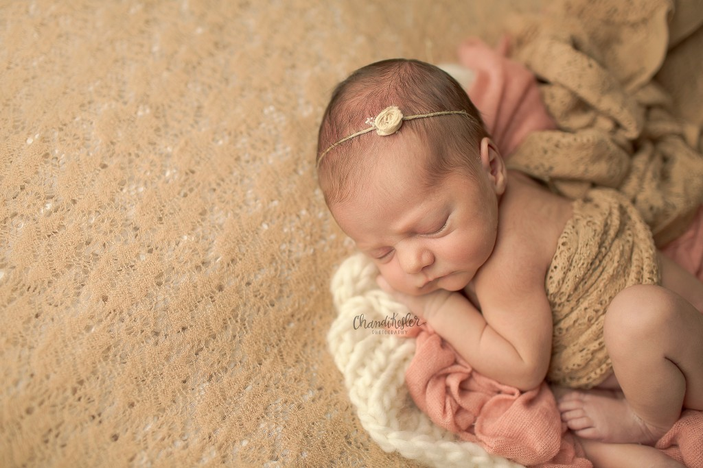 Champaign IL Photographer | Central IL Newborn Photographer | Newborn Girl Session | Chandi Kesler Photography