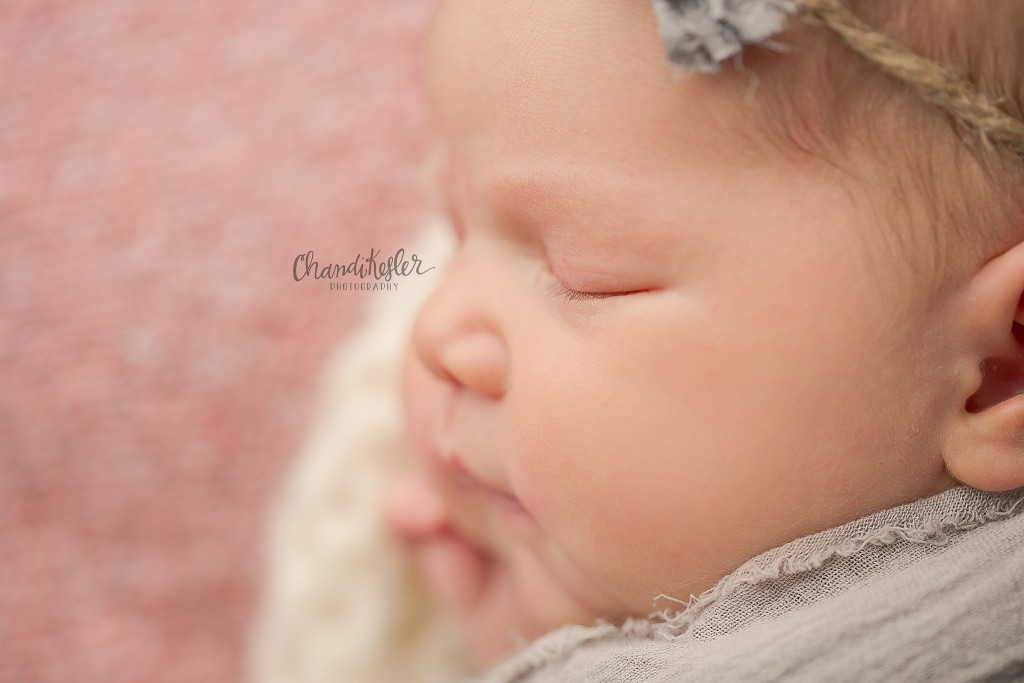 Sullivan iL Newborn Photographer_6608