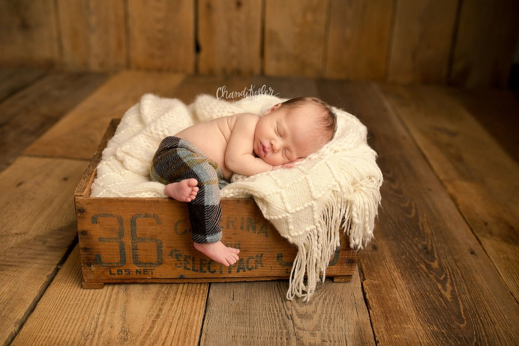 Newborn Posing Ideas | Newborn in prop | Decatur IL Photographer