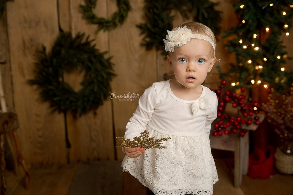 Studio Christmas Mini Session Ideas | Pontiac IL Photographer | Holiday Backdrop ideas