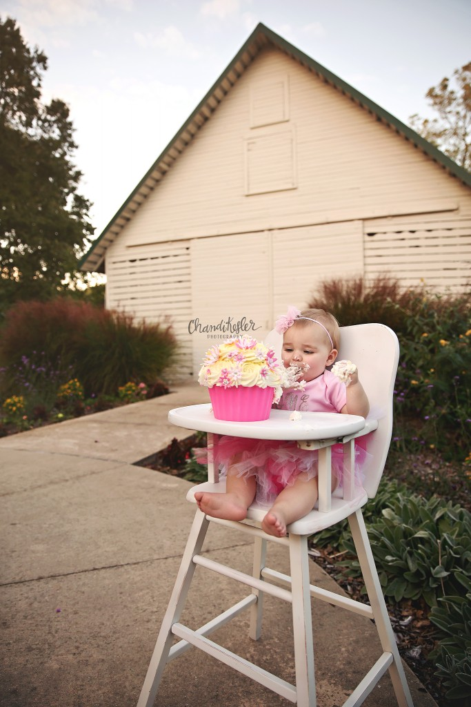 outdoor cake smash session | family of 3 photos | Fairbury IL Photographer