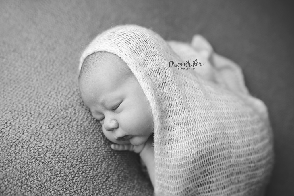 Morton IL Photographer | Chandi Kesler Photography | newborn taco pose
