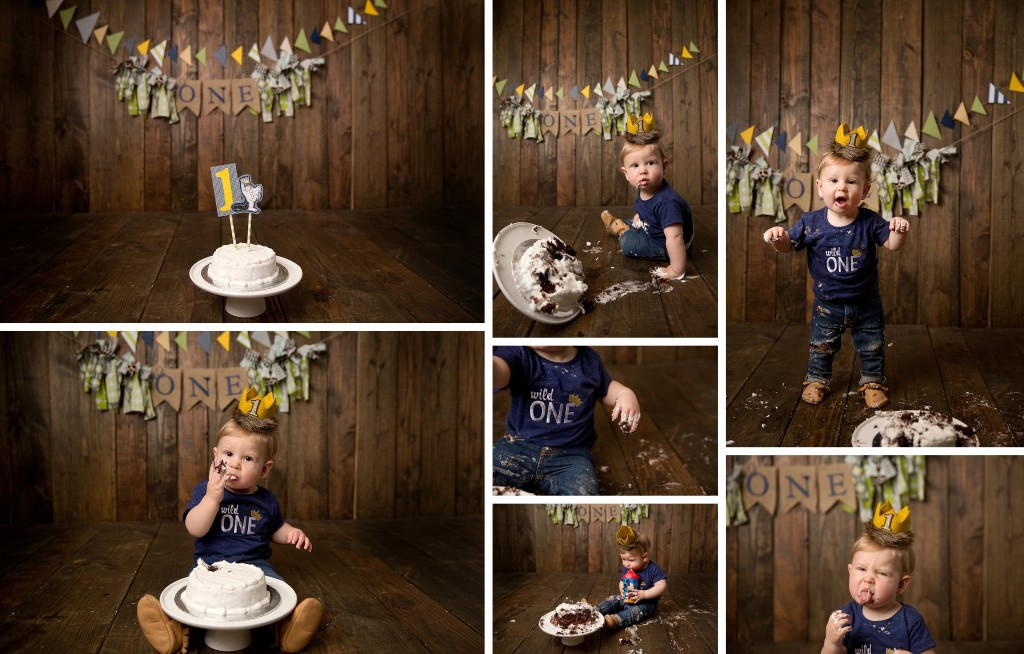 Where the Wild Things Are Birthday | Themed 1st birthday photo session | Peoria IL Photographer