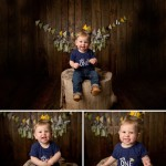 Where the Wild Things Are Birthday Photo Session | 1 Year Photo Session with Jackson | Rantoul IL Baby Peoria IL Cake Smash Photographer