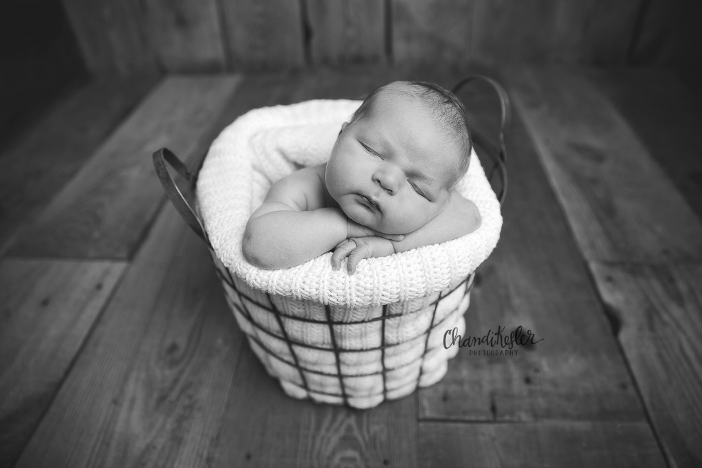 Peoria IL Newborn Photographer | newborn in basket pose | newborn posing