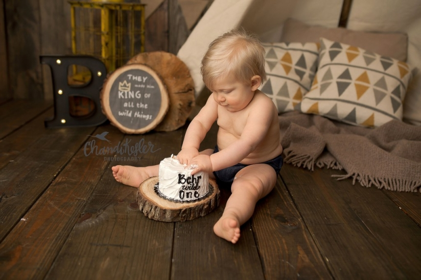 Champaign IL Baby Photographer | Cake Smash | Where the Wild Things Are Party