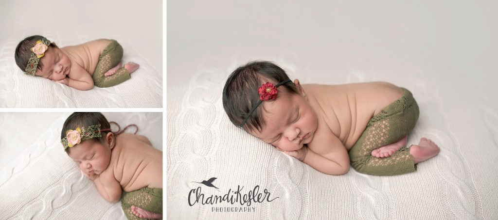 Dainty Meadow Newborn Props | Chandi Kesler | Best Central IL Newborn photographer