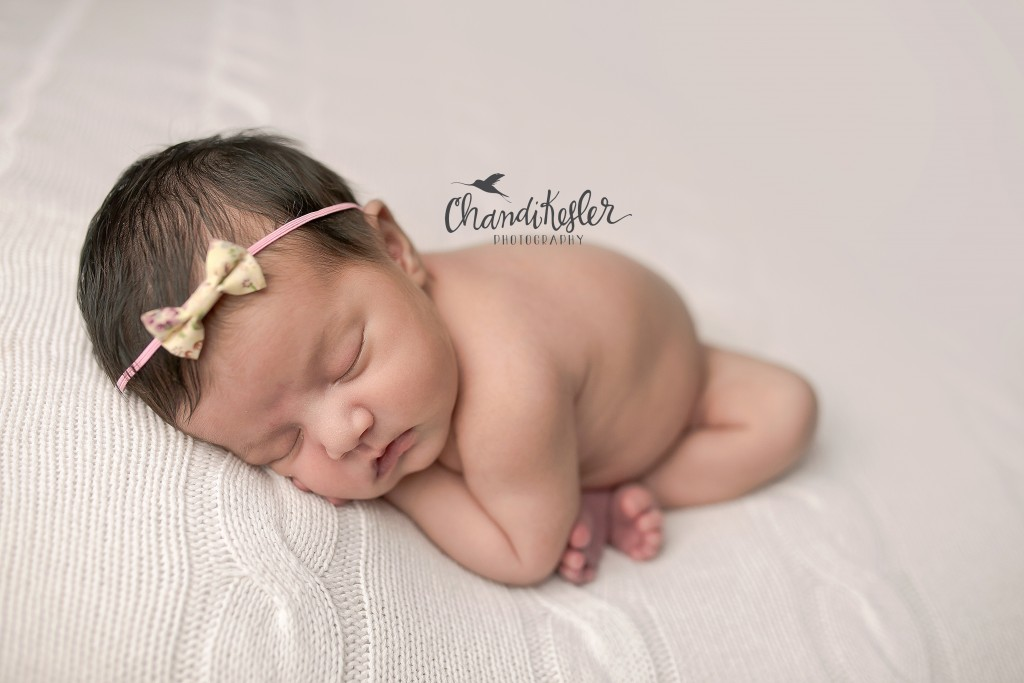 Newborn Beanbag posing | Chandi Kesler | Best Central IL Newborn photographer