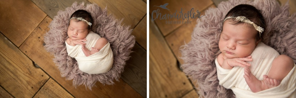 Newborn prop posing | Chandi Kesler | Best Central IL Newborn photographer