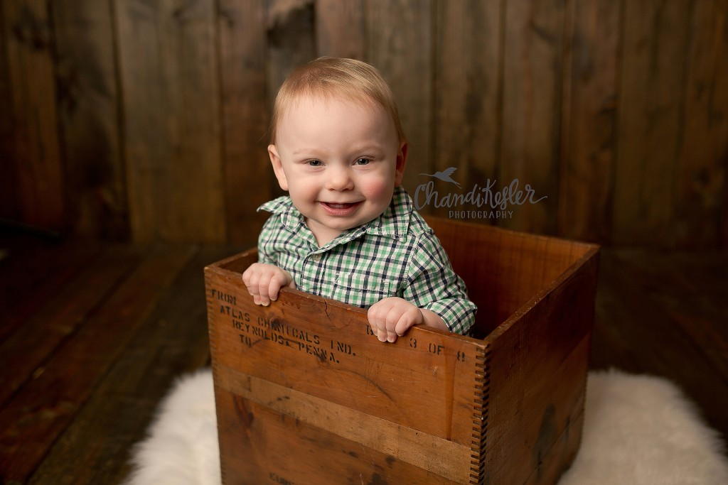 Charleston IL Baby Photographer | Chandi Kesler Photography | Cake Smash Collage