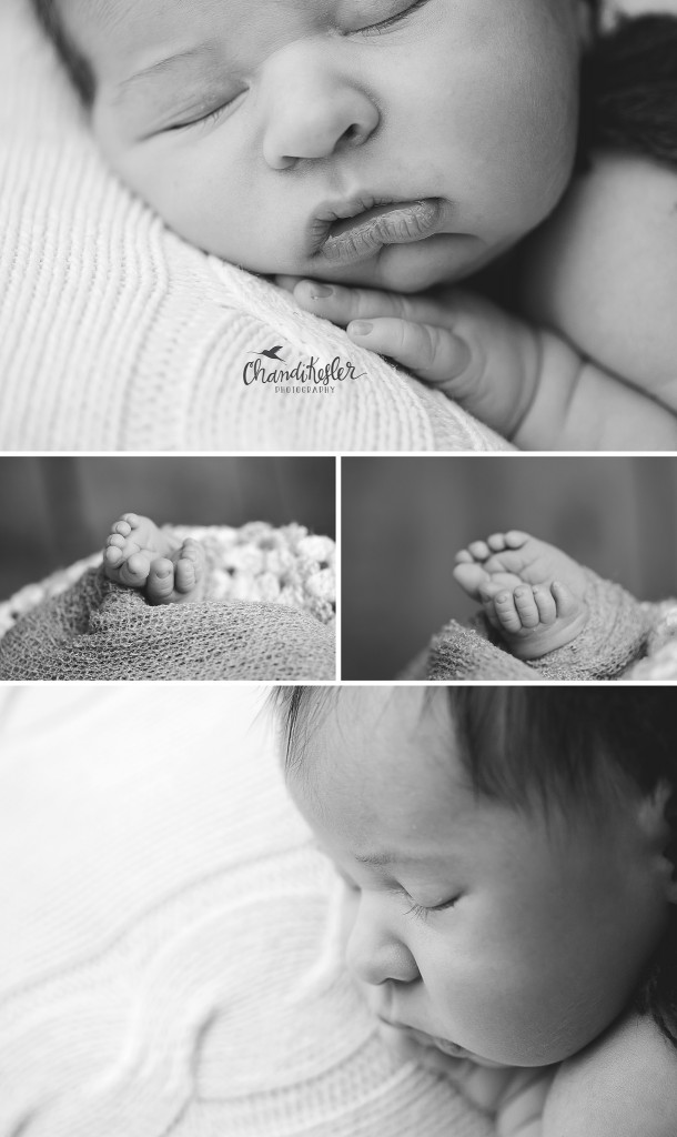 newborn macro | Chandi Kesler Photography | Champaign IL Photographer