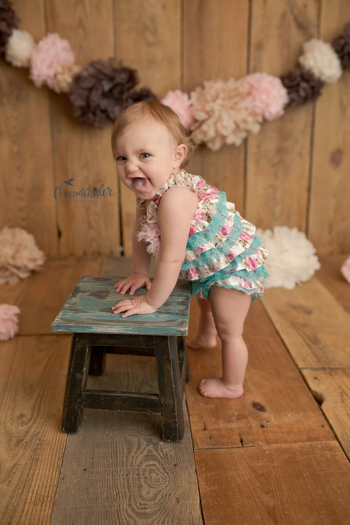 Decatur IL Baby Photographer   1 year Session   Chandi Kesler Photographer