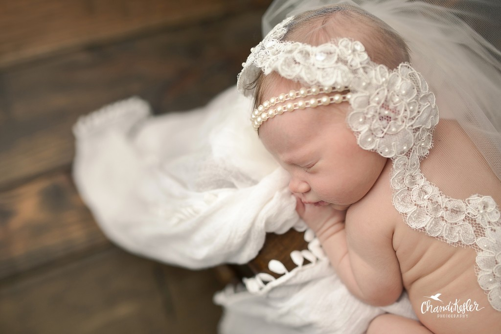 Newborn wrapped in wedding veil | Bloomington IL Newborn Photographer | Newborn Girl Session