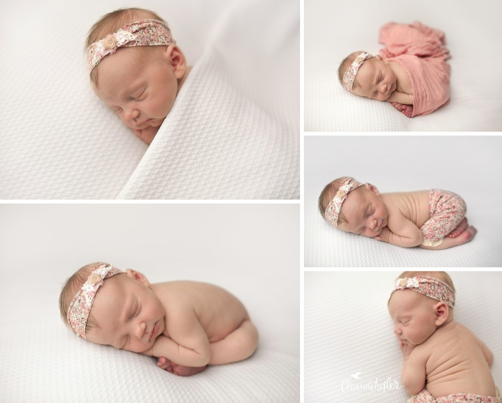 Bloomington IL Newborn Photographer | Newborn Girl Session