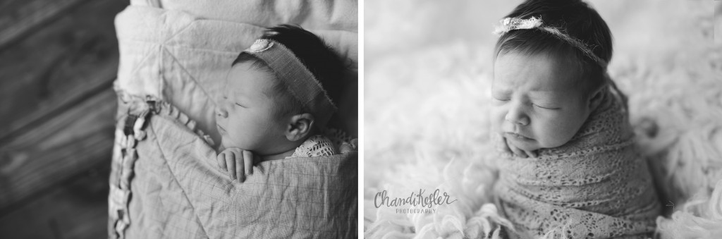 Champaign IL Newborn Photographer | newborn prop posing | Chandi Kesler Photography
