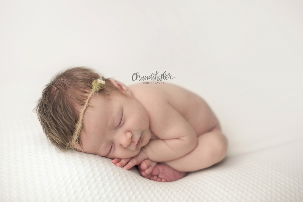 Champaign IL Newborn Photographer | newborn taco pose | Chandi Kesler Photography