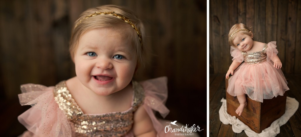 Bloomington IL Photographer | Girl Cake Smash Session | Chandi Kesler Photography