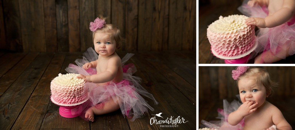 Bloomington IL Photographer | Girl Cake Smash Session
