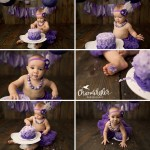 1 Year Cake Smash Session with Meredith| El Paso IL Baby Bloomington IL Photographer