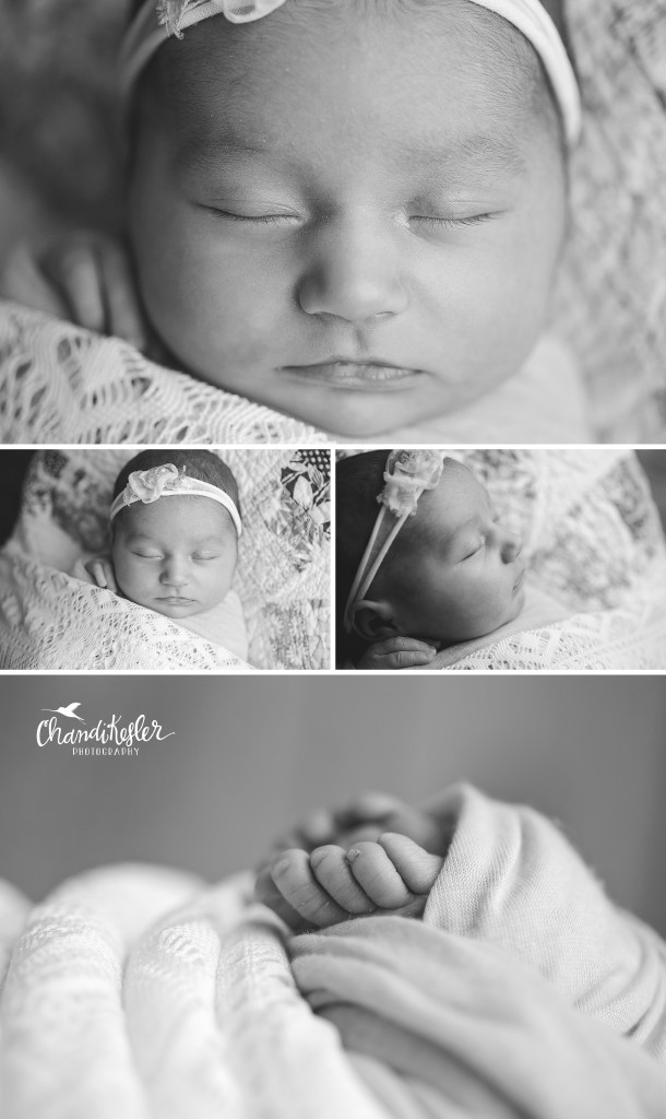 Champaign IL Newborn Photographer | Newborn Girl Session | Macro details